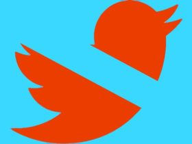 Este activista climático dice que fue silenciado en Twitter