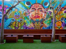 Eche un vistazo al colorido y nuevo jardín de tequila de Pilo